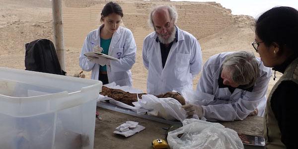 Researchers examine Peruvian mummy