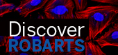 Discover Robarts 2017