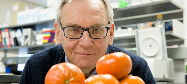 A compound in citrus fruit may help your health